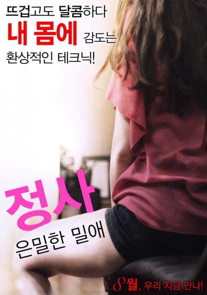 Love Affair A Secret Affair (2016) [เกาหลี 18+]