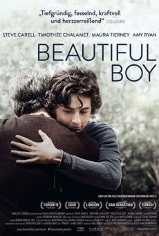 Beautiful Boy (2018) แด่ลูกชายสุดที่รัก